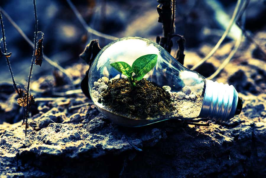 economia verde